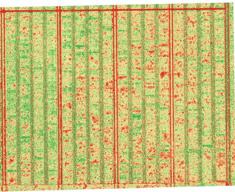 Calcul d'indices végétaux par drone