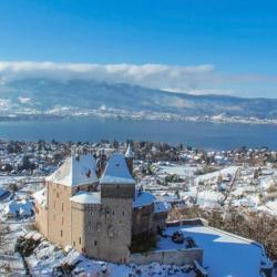 Chateau de Menthon et lac d'Annecy en photo aérienne de drone