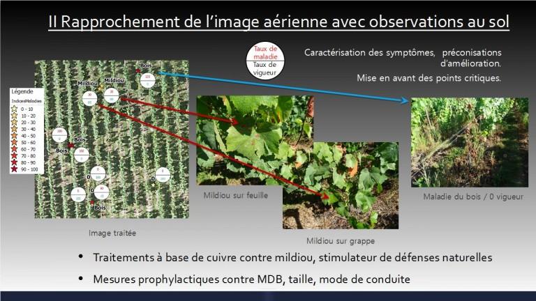 Photo aérienne technique en agriculture et viticulture
