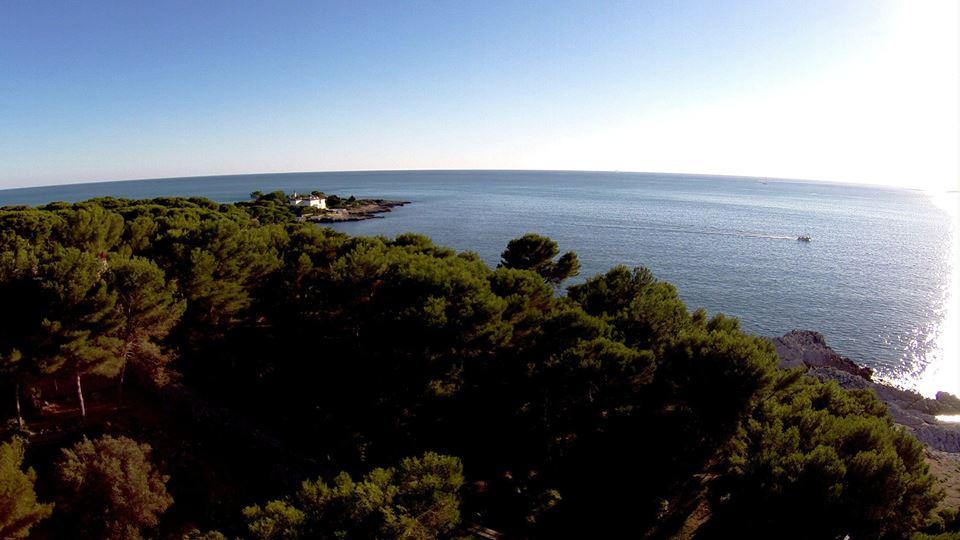 Photographie mer et foret vue en hauteur par un drone
