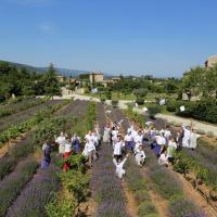 Photos, la Provence-Alpes-Côte-d'Azur en vues aériennes par drone