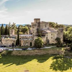 Photographie aérienne Chateau de Lourmarin dans le Luberon