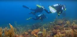 Cameraman sous marin pour vidéo sous marine