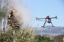 Drone tueur de frelons asiatiques