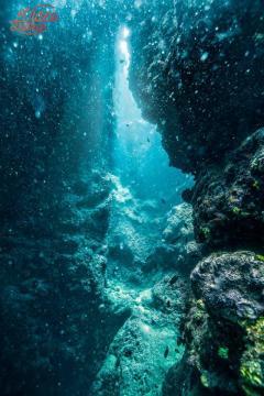 Fond sous marin photographie par photographe de Perpignan