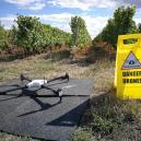 Inspection de vignes par drone sur Saumur