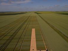 Inspection par drone d un champ de blé