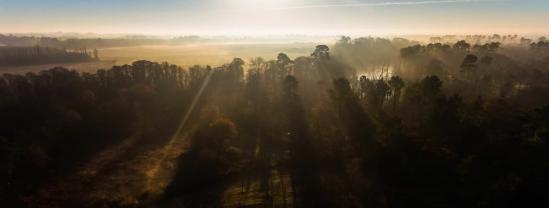 Paysage des landes en vue aerienne par drone