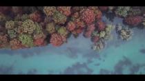 Photo aerienne par drone sur grenoble