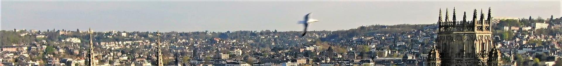Vidéo aérienne par drone