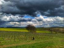 Photo de paysage par photographe Evreux