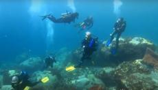 Photo de plongées sous marines par vidéaste professionnel à Nîmes