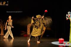 Photo de spectacle par photographe de Vichy
