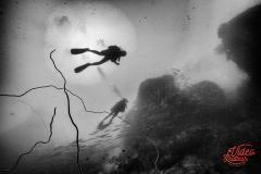Photo sous marine par photographe professionnel de Perpignan