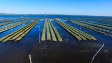 Photographie aérienne par drone du bassin d Arcachon