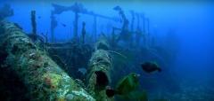 Photographie sous marine en Provence-Alpes-Côte-d'Azur