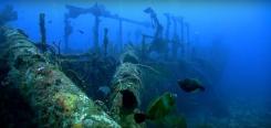 Photographie sous marine en Champagne-Ardenne