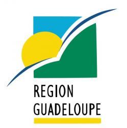Pilotes de drone en Guadeloupe travaux et vues aériennes