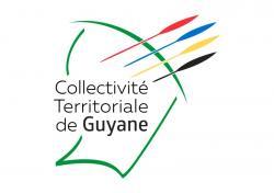 Pilotes de drone en Guyane française travaux et vues aériennes