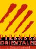 Pyrenees orientales 66 pilote de drone