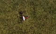 Recherche par drone