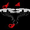 Telepilote drone charente maritime